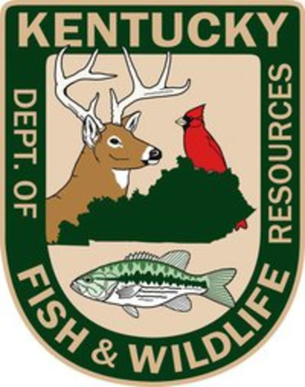 Stuart n ray elected as chairman of kentucky fish and for Fish and wildlife