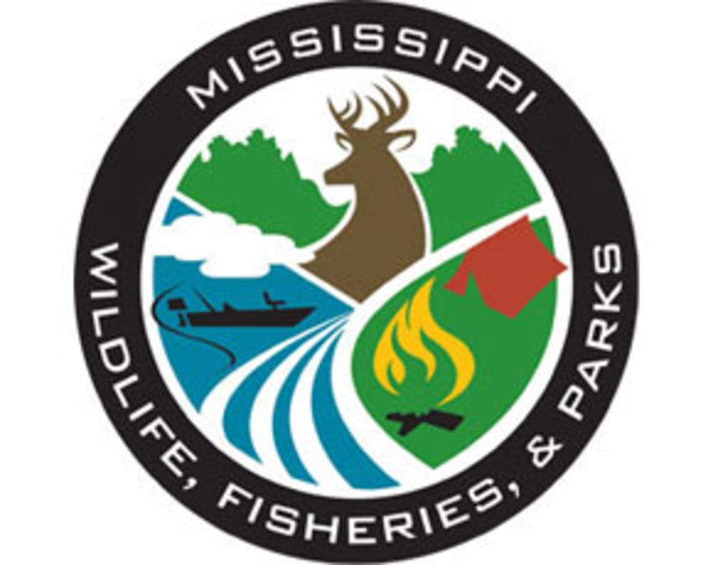 Mississippi dwfp offers new waterfowl hunting opportunity for Mississippi fish and game
