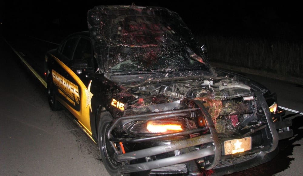 Sheriff's Deputy Decimates Squad Car by Nailing Deer at 114 miles per hour