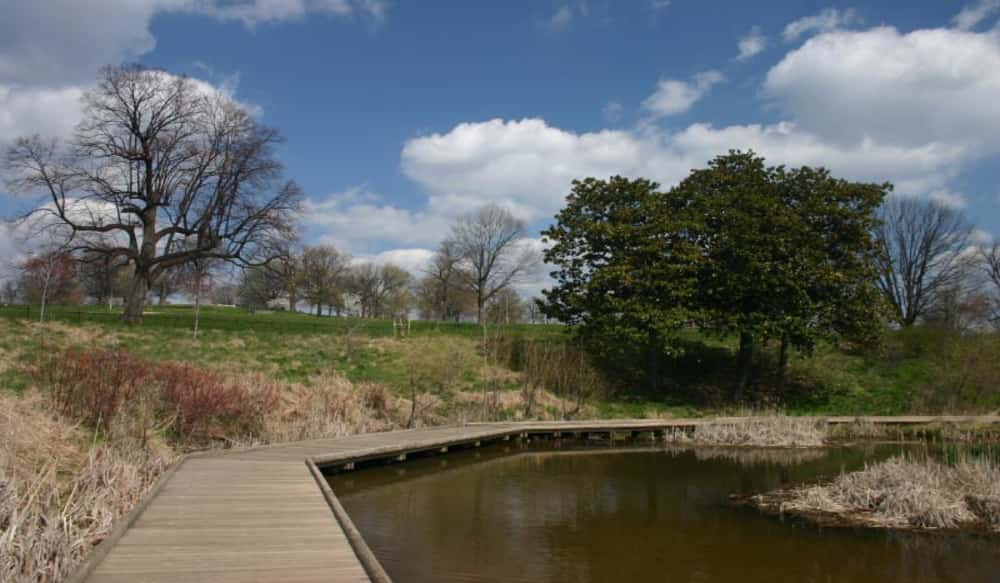 cass lake dating site Epa sues city of cass lake over clean up costs of superfund site the epa and cass lake have agreed the city will pay $30,000 because the city is so small and.