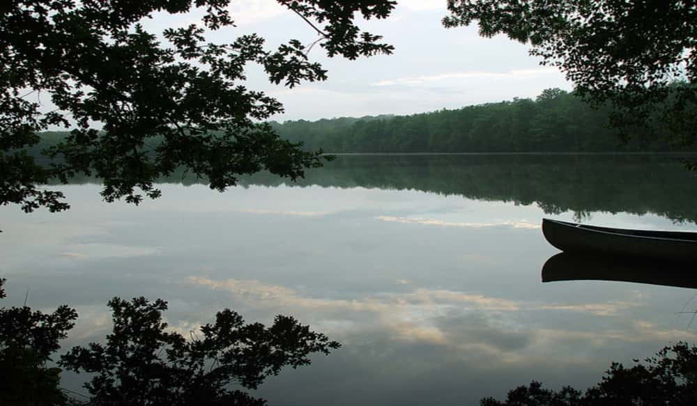 Walmart bass fishing league lbl division to host event on for Ky and barkley lake fishing report