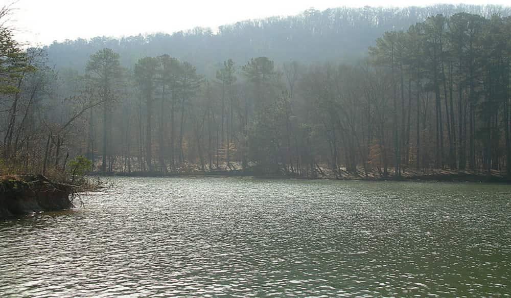 Alabama walmart bass fishing league to host event on lake for Fishing lake guntersville