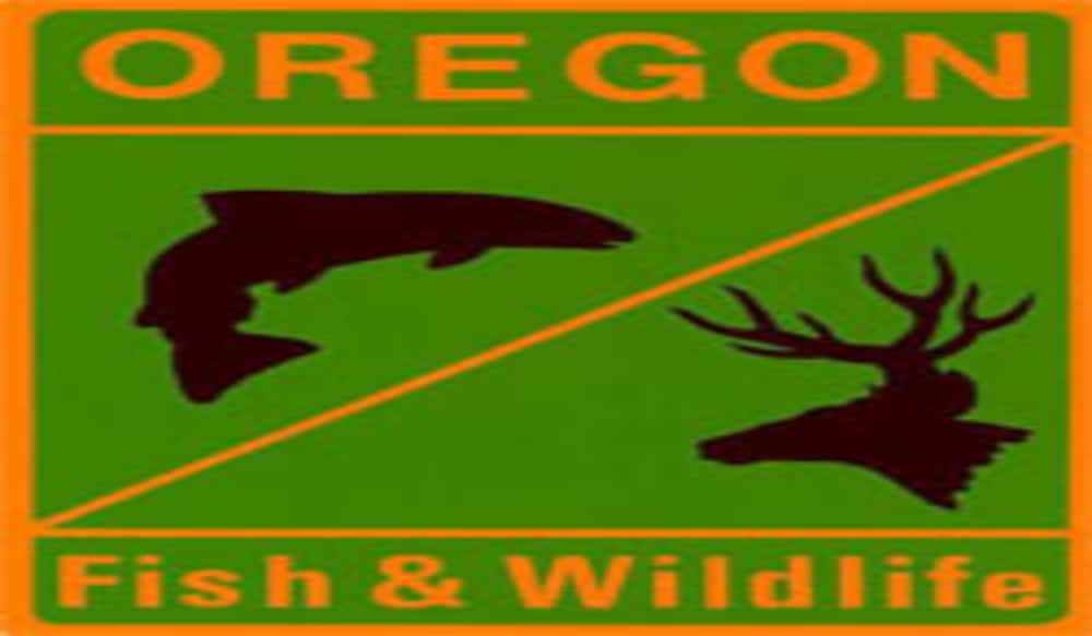 Oregon dfw and bpa to award 2 5 million for wildlife for Oregon department of fish and wildlife