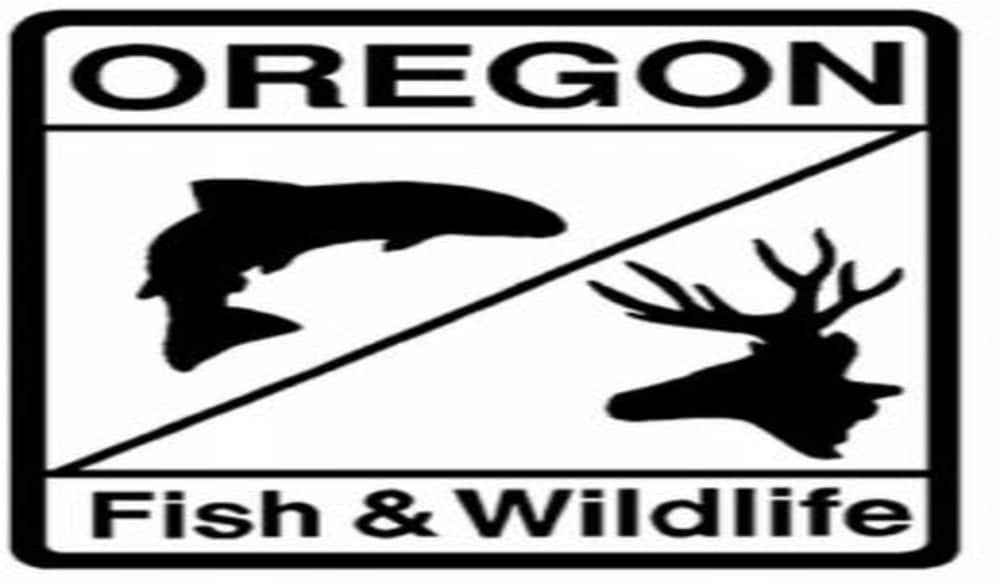 Oregon fish and wildlife commission sets 2012 groundfish for Oregon fishing license cost 2017