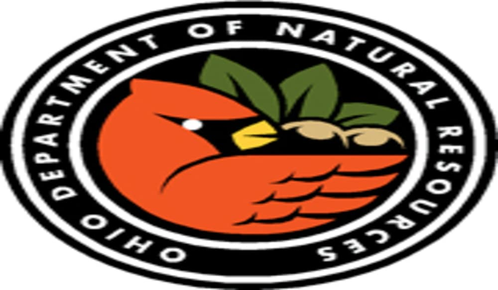 Director Of The Ohio Department Of Natural Resources
