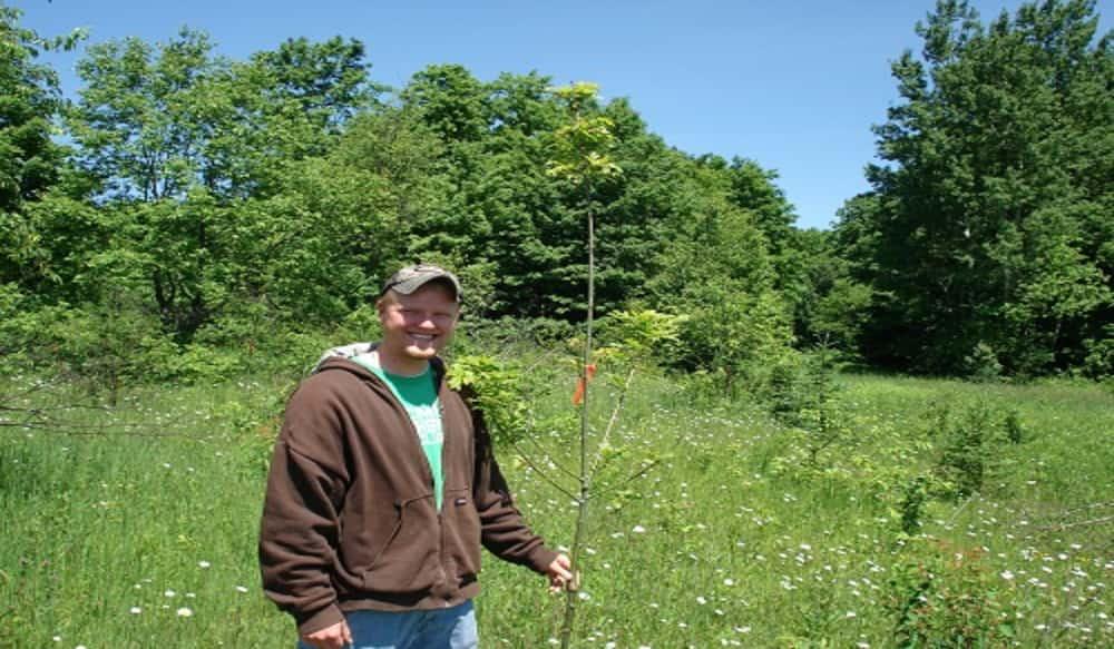 Michigan DNR Plantings and Habitat Improvements Benefit