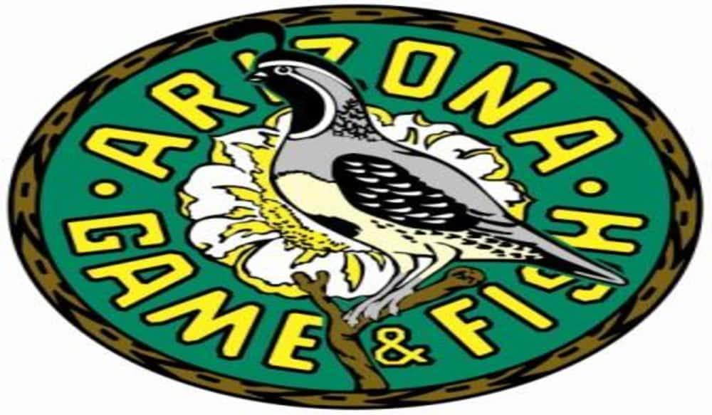 Arizona 39 s free fishing days are june 2 9 outdoorhub for Az fish and game