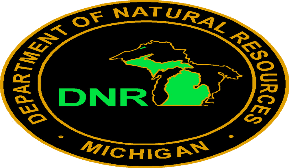 Dnr to reduce chinook salmon stocking in lake michigan for Illinois dnr fishing license