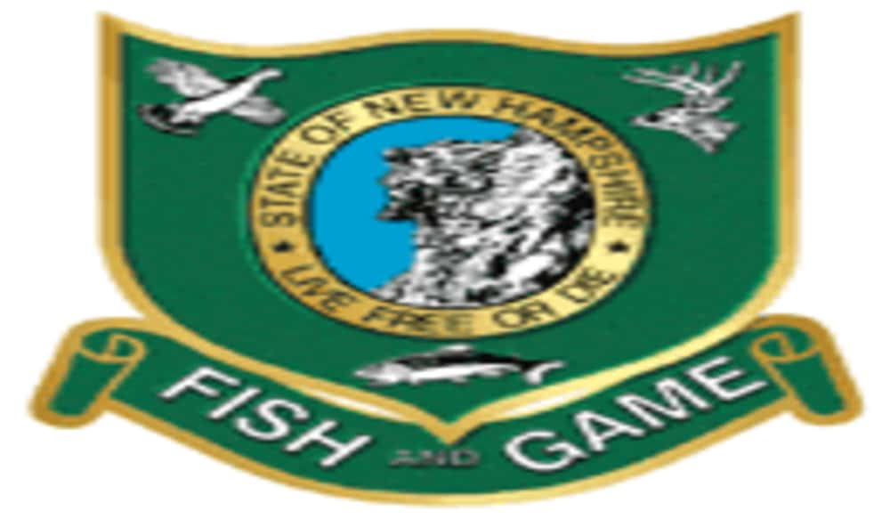 New hampshire fishing report september 6 outdoorhub for Nh fish game