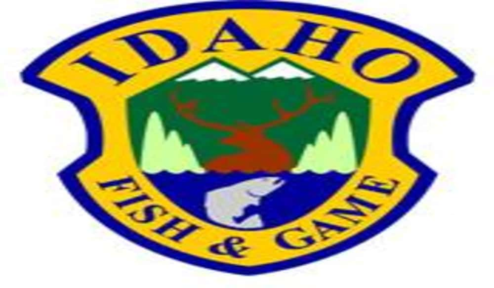 Idaho deer and elk tag quotas update for september 24 for Department of fish and game