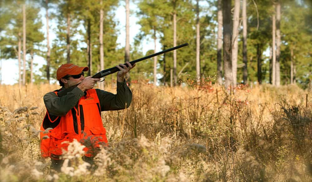 New report shows rise in hunting fishing wildlife for Hunting and fishing forecast