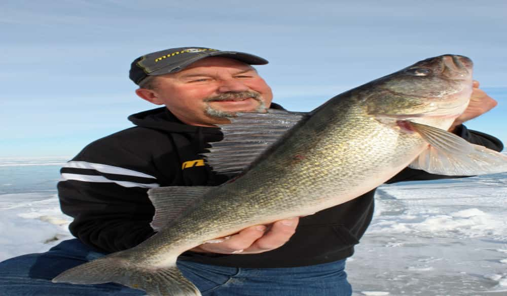 Good morning good night the best times for walleye for Best time to fish for walleye