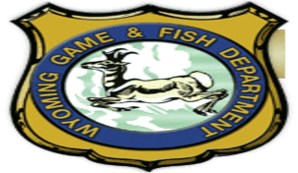 Wyoming record fish outdoorhub for Wyoming game and fish regulations