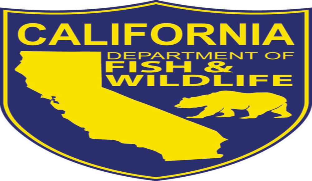 artists sought to enter 2013 california state duck stamp