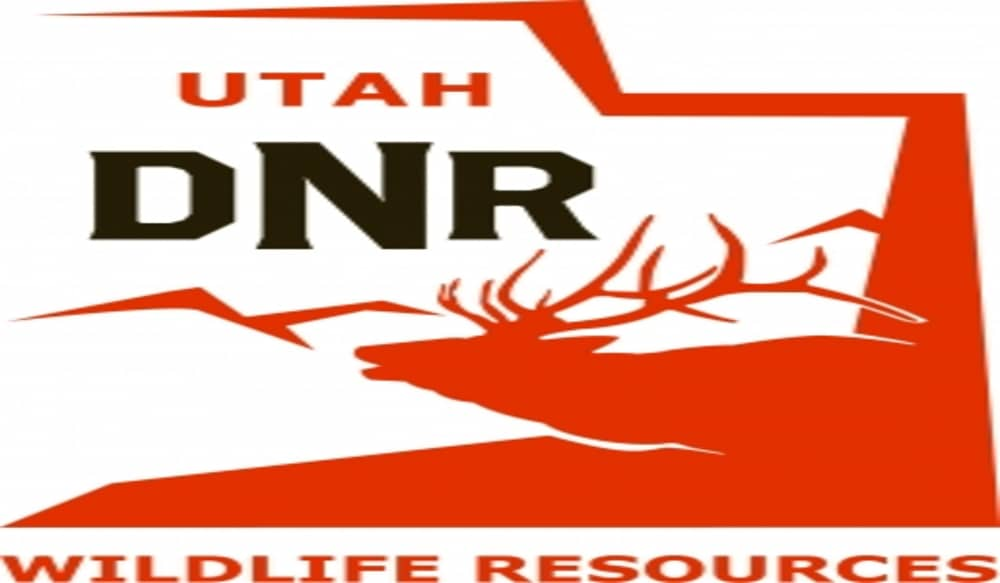 Utah 39 s hyrum state park hosts tagged fish challenge for Utah fishing license cost