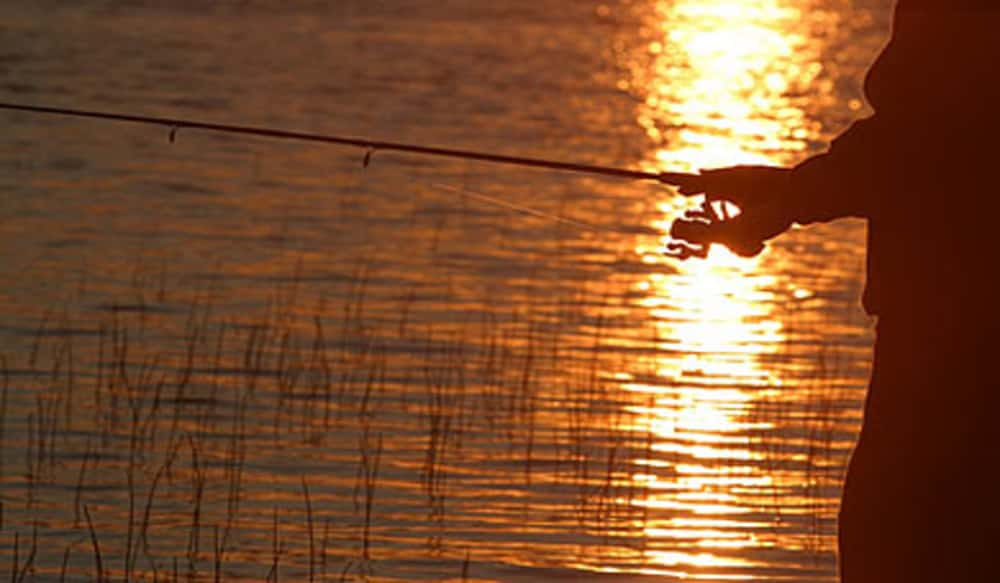 Renew your state hunting and fishing license in south for Renew fishing license