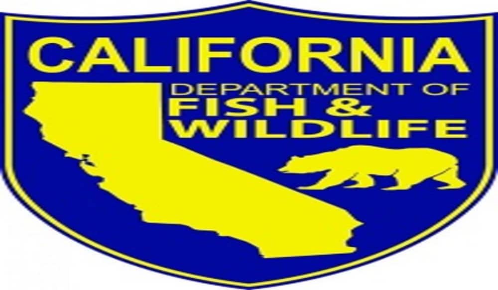 California dfw offers reduced fee licenses and special for Veteran fishing license