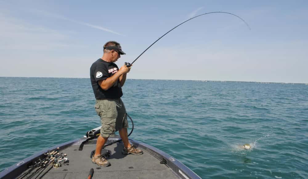Drop Shots and Tubes for Lake St  Clair Smallmouth Bass