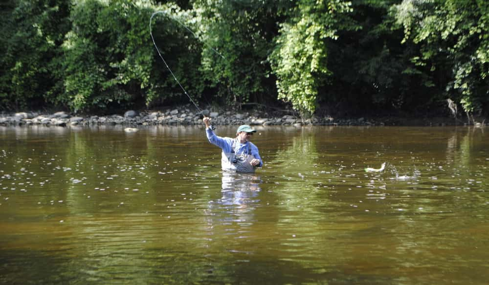 Fly fishing the flint river for michigan smallmouths for Fly fishing michigan