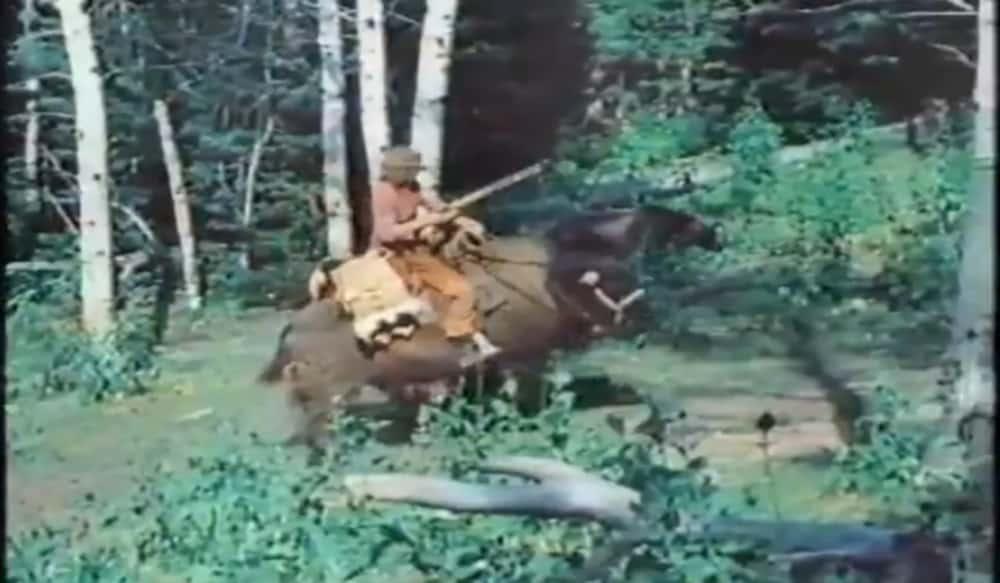 a0aad77d Video: It's a Man on a Buffalo Chasing a Bear | OutdoorHub