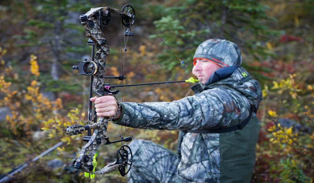 What S The Best Draw Weight For A Bow Outdoorhub