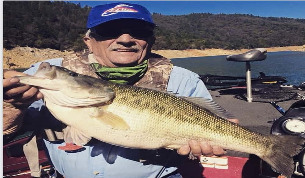 Spotted Bass Record