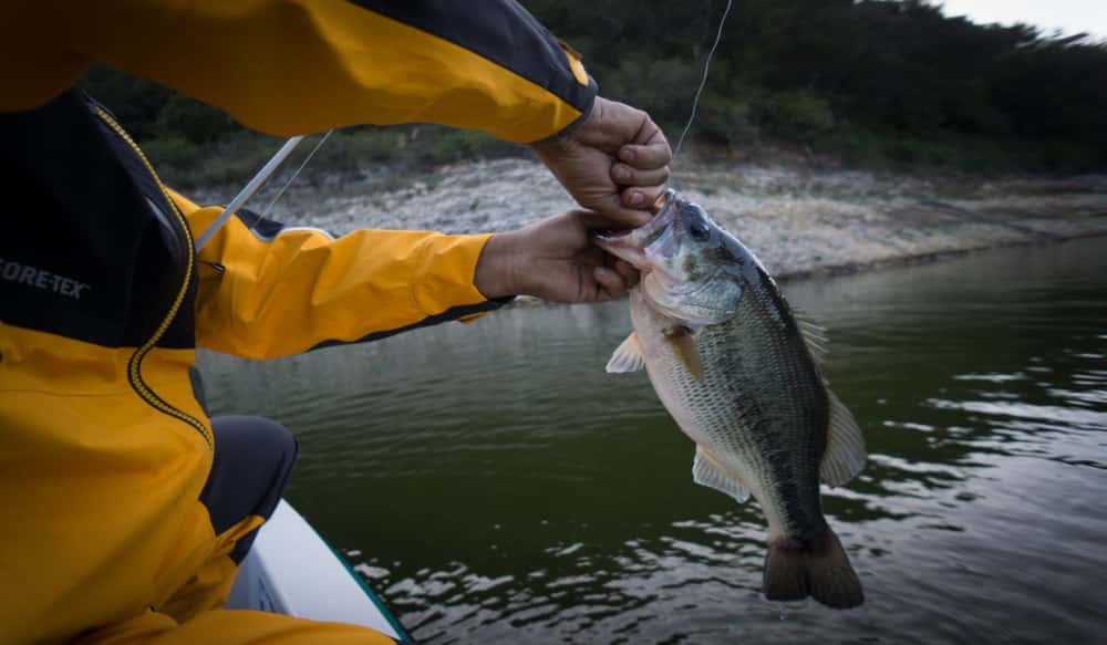 Tactics for Catching Big Spring Bass