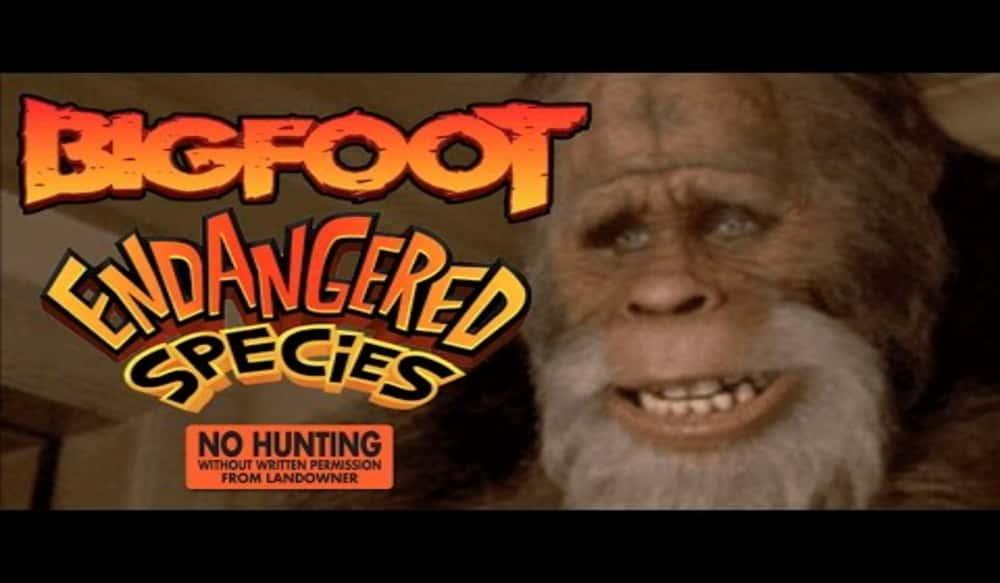 Words... bigfoot facial expression video