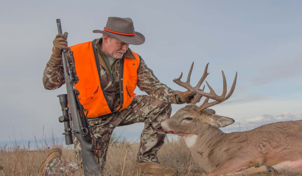 Best of the Big Game Bullets, Part 3 of 4: Hornady ELD-X