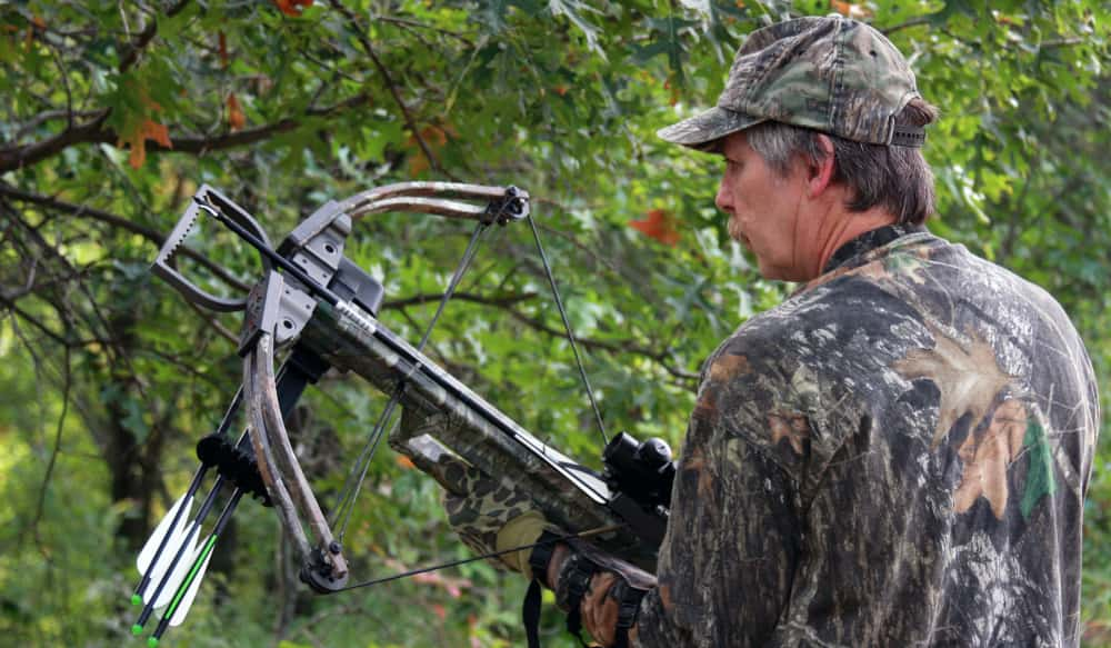 How To Know If You Should Replace Your Crossbow Limbs