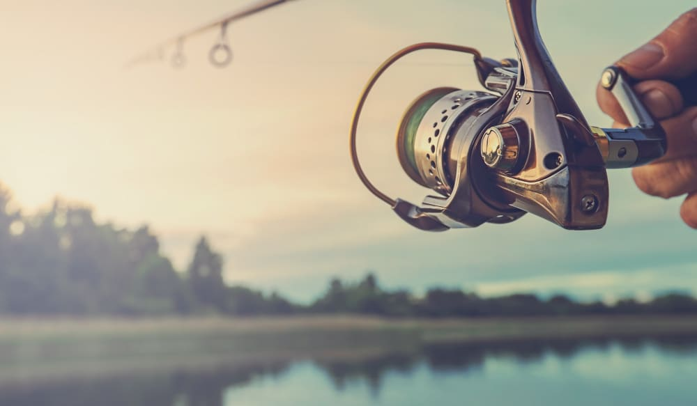Best Fishing Apps 2019 The Best Fishing Apps to take your summer to the next level