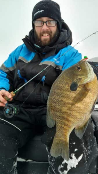 How to keep live bait kicking throughout the winter for Pa fishing license cost walmart