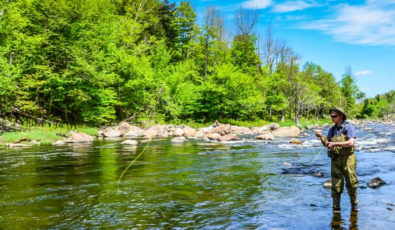 Rise to the Occassion with the Best Fly Fishing Rods
