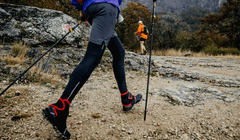 Stay Stable on the Trail with the Best Trekking Poles